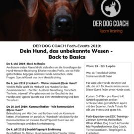 20. Juni 2019 | Event zum Thema Kommunikation – auch  für Menschen mit Angst vor Hunden geeignet
