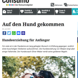 Presse: Hundeerziehung für Anfänger